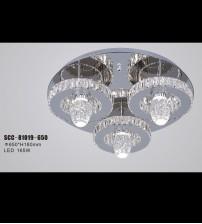 SCC-81019-650