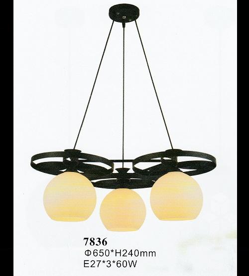 7836-3P