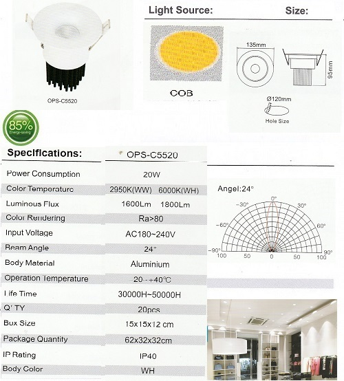 OPS-C5520-20W
