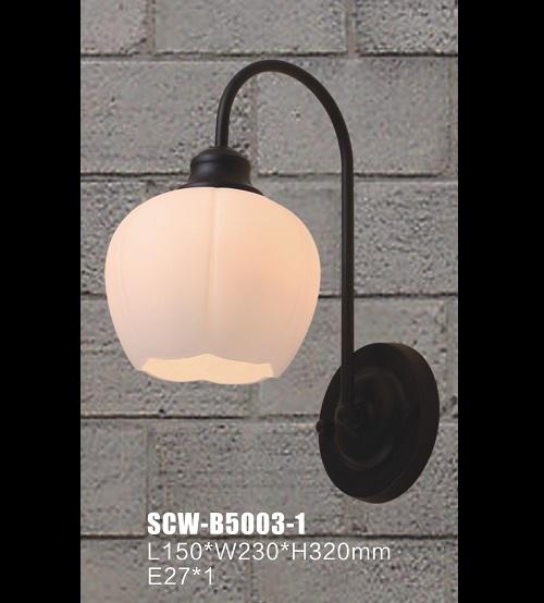 SCW-B5003-1