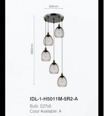 IDL-1-H5011M-5R2-A