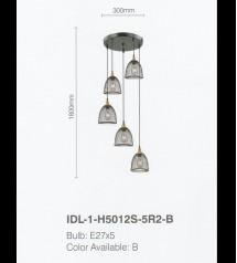 IDL-1-H5012S-5R2-B